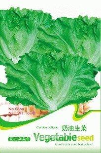 5 packs 500 zaden tuin sla groentezaden gratis verzending C009