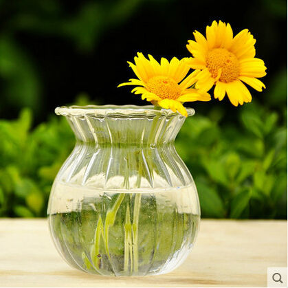 Transparent stripe glass vase hydroponic container creative home decoration accessories(China (Mainland))