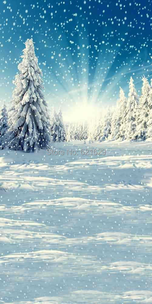 Dancing Snow 10x20 CP Computer-painted Scenic Photography Background Photo Studio Backdrop L-891<br><br>Aliexpress