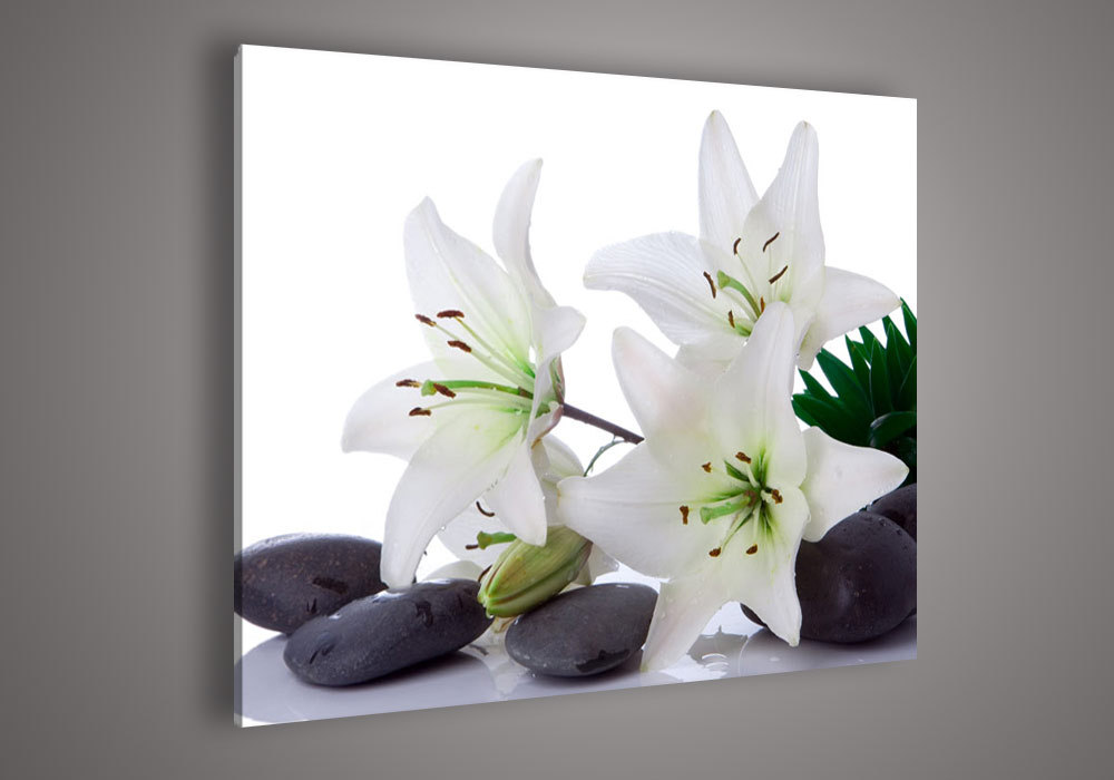 Black And White Floral Wall Decor : No frameless draw modern abstract acrylic flower black