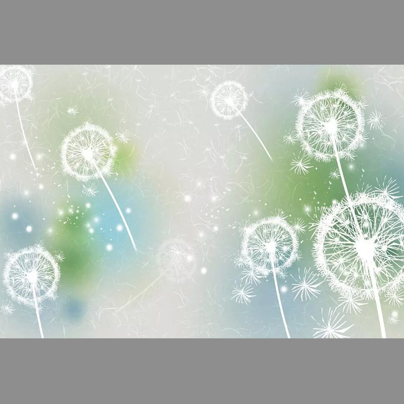 White dandelions Unseamed silk cloth Custom photo wallpapers 3D wall papers sofa backdrop mural wallpapers background