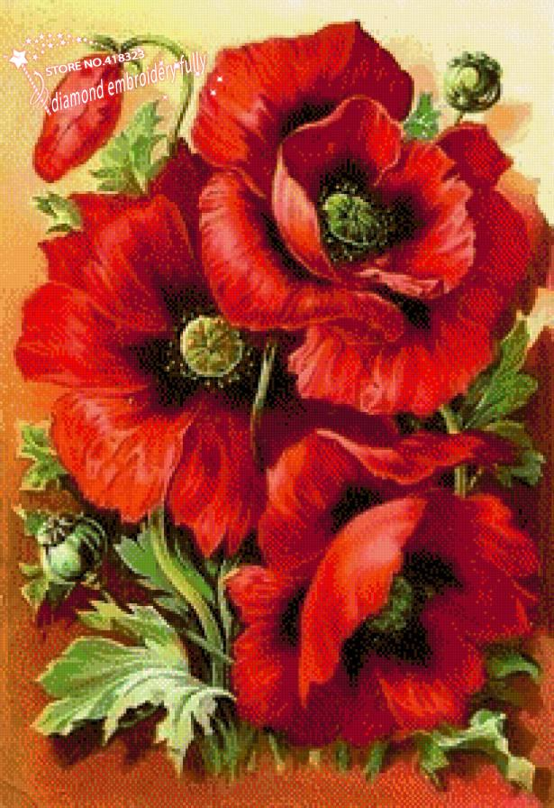 Poppy flower drawing reviews online shopping poppy - How to paint poppy flowers ...