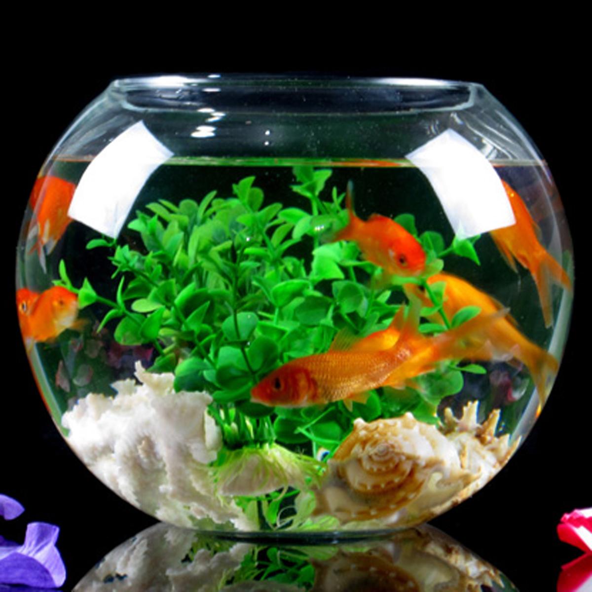 store wholesale. Fish tank aquarium large fish tank small fish tank ...