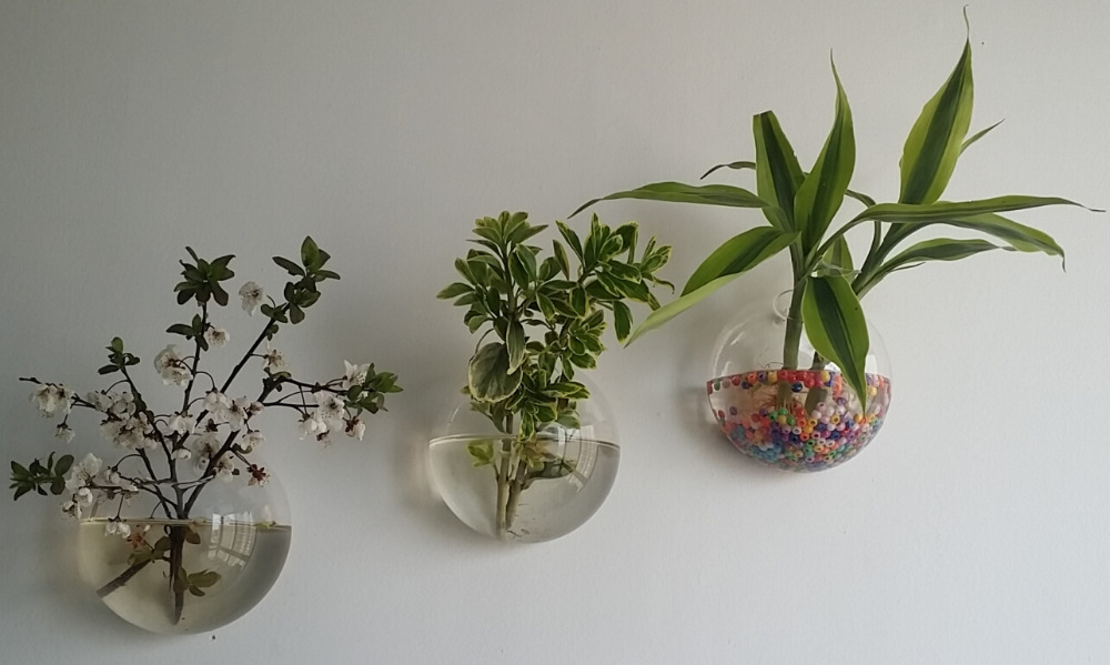 Hanging wall glass planter vase glass fish tank indoor wall decor air plant moss terraruim for