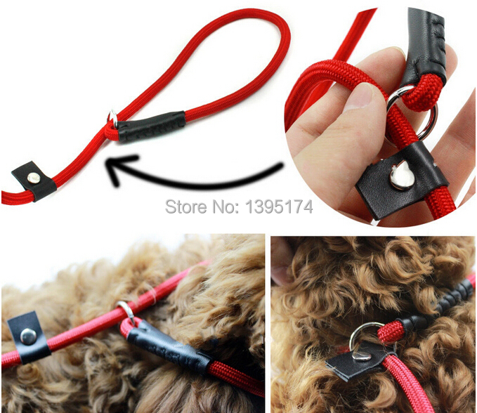 Pet Tow Rope Harness Adjustable Dog Chain Leash Retractable Dog Collar for Big Small Dog Black/Blue/Red 0.6*140cm(China (Mainland))