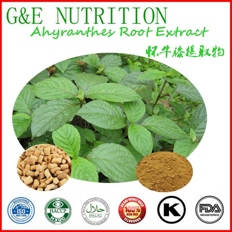 High quality factory price  Ahyranthes Root Extract with free shipping 400g<br><br>Aliexpress