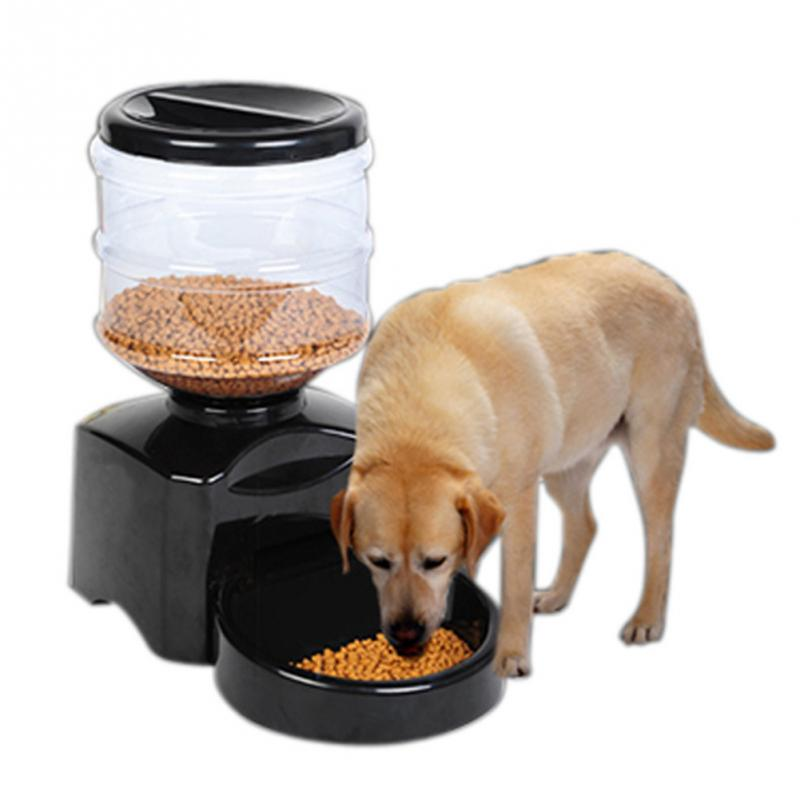 Automatic Dog Food Delivery