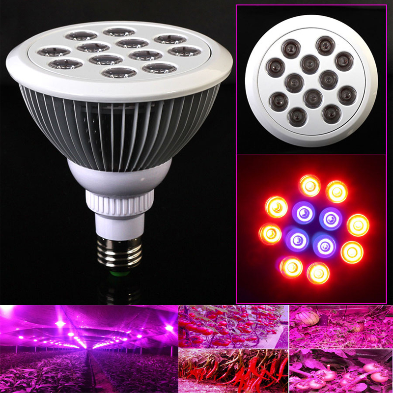 New Arrival 85-265v 27W 36W E27 Full spectrum plants red+blue Led Growth Light Hydroponic Bloom flowering LED grow lamps<br><br>Aliexpress
