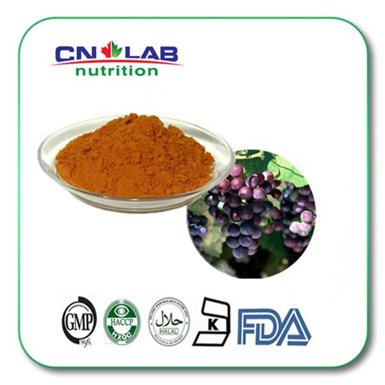 100% Water Soluble Grape Seed 500gram/bag Grape seed extract , grape seed extract powder 95% OPC with best price