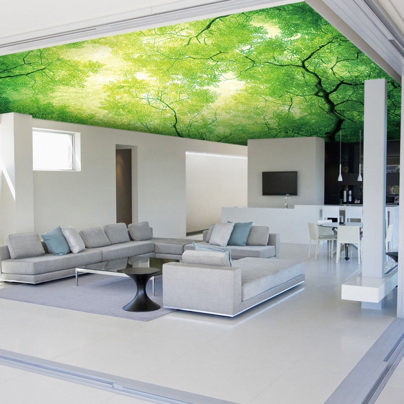 wholesale trees murals 3d ceiling murals for living room. Black Bedroom Furniture Sets. Home Design Ideas