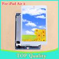 Big Big Sale 10pcs lot Free DHL EMS For iPad Air 2 iPad 6 LCD Display