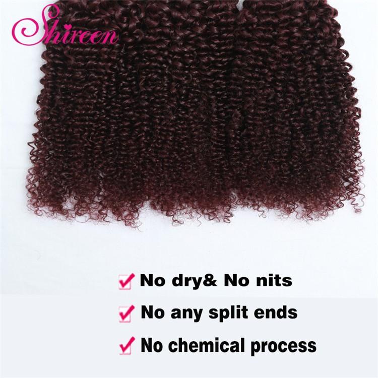 8A Ombre Brazilian Hair Weave Bundles Burgundy 99j Brazilian Hair Curly Wave Red Brazilian Curly Wave Ombre Hair Extensions