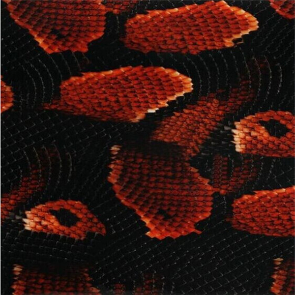 [Width 0.5M] FREE SHIPPING Red Snake 4-22 Water Transfer Printing Film, 0.5*10M Hydrographic film, Decorative Material(China (Mainland))