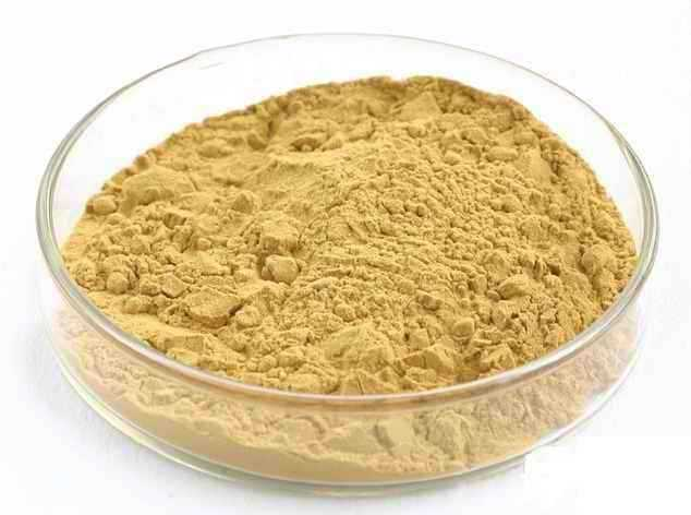 Milk thistle extract 80% silymarine <br><br>Aliexpress