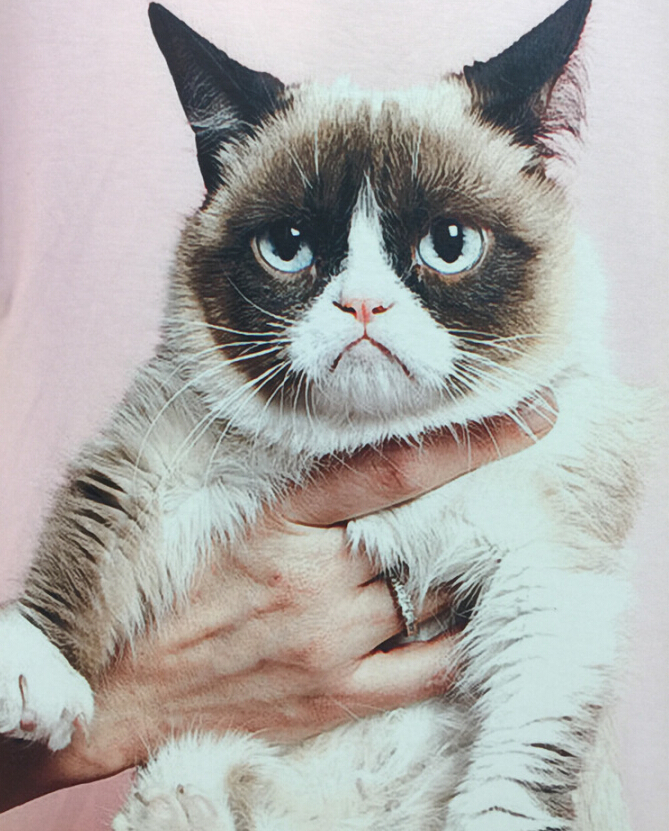 New summer Grumpy Cat Ariel The Little Mermaid print men/boy Short sleeve T-shirt Duplex printing T-shirt Tops