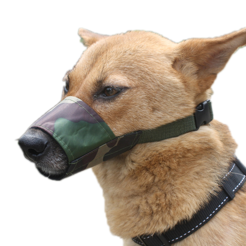Mouth Cover For Small Dogs