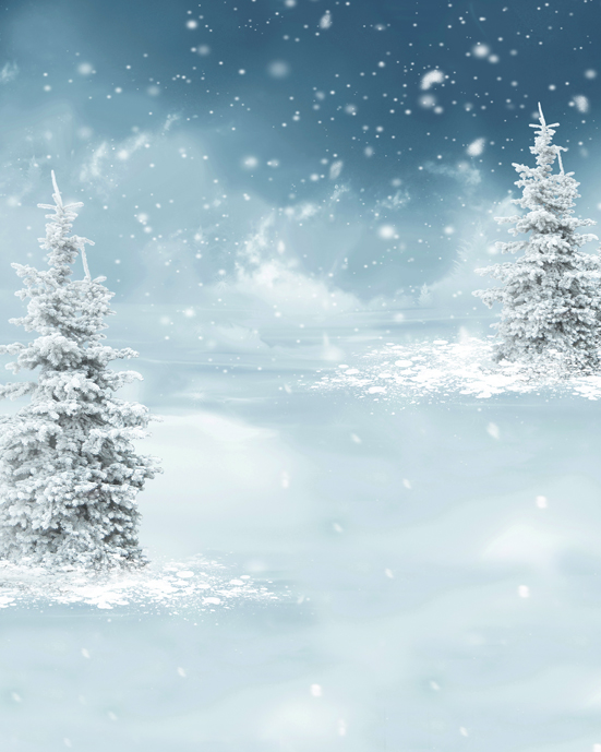 Winter Night Iced Tree Silver Snow Flakes 5x7ft Christmas Background Photo Studio Props Vinyl Photography Backdrops(China (Mainland))