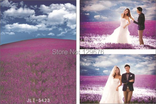 Фотография Vinyl Custom Photography Backdrops Prop Photo Studio Background  Wedding Dress JLT-5423