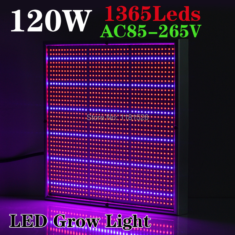 Newest 120W 1131Red:234Blue High Power LED Grow Light for Flowering Plant and Hydroponics System AC85-265V Free Shipping
