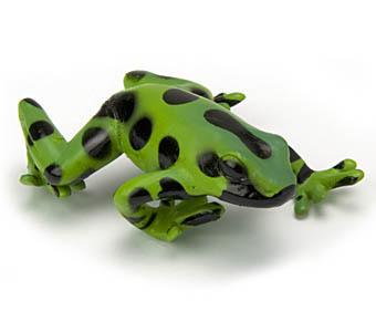 `Animal model toy Colorata genuine animal models [ Japan frog poison dart frog camouflage Daquan 02 ] 5-1-2(China (Mainland))