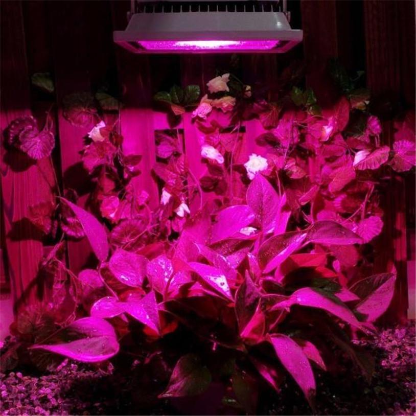 18W LED Grow Light Hydroponic Plant Veg Flower Full Spectrum Hydro Panel Lamp quality first<br><br>Aliexpress