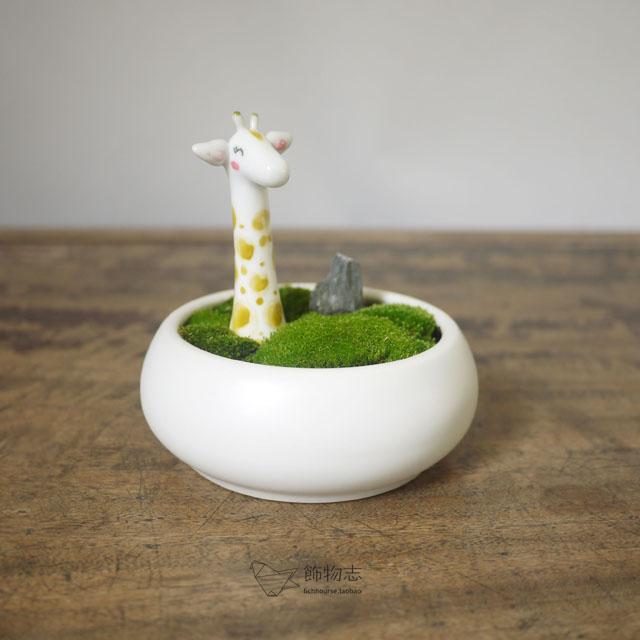 Accoutering Ceramic Flower Pot Fleshier Plant Small Flower