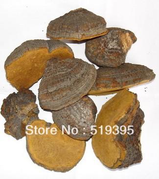 Высокое качество 100gram 100% натуральные питательные Igniarius экстракт порошок 30% Полисахарида здоровой для желудка