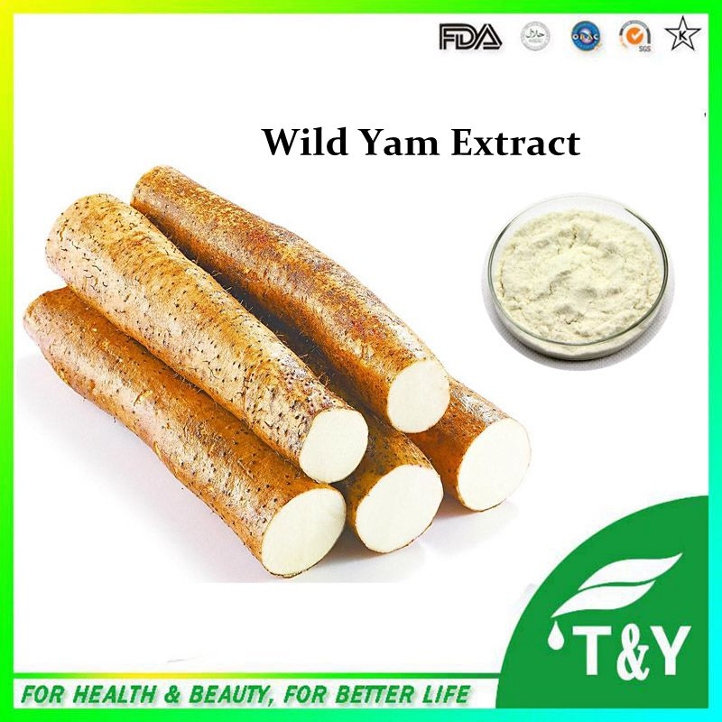wild yam root extract with top quality at low price 700g/Diosgenin 700g
