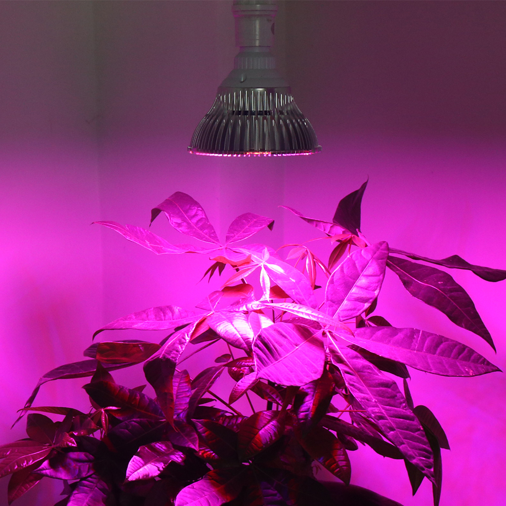 27W 6RED&3BLUE E27 LED Hydroponic Plant flowers vegatables Greens Grow Lights plant growing lamp - Professional Light Manufacturer store