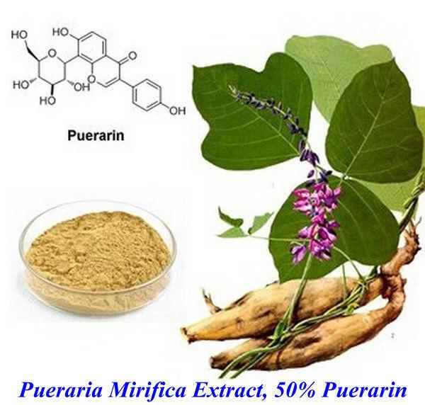 Травяной чай 100 g Pueraria Mirifica /kwao krua/, Puerarin 50% c ts021 new 100g top grade purely natural organic pueraria mirifica powder puerarin lobed kudzuvine root extract herbal tea