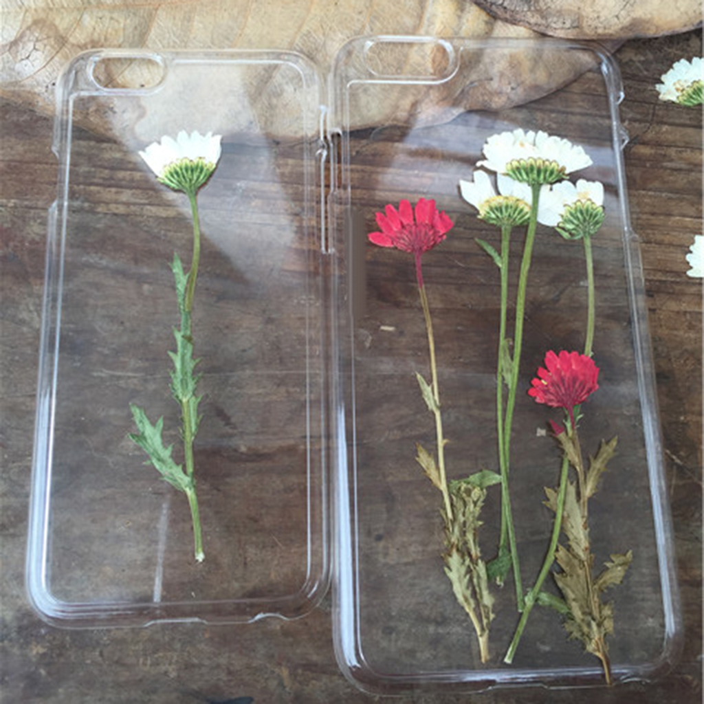 Pack of 12 Stems Real Pressed Flower For Wedding Invitations Card Making Floral DIY Scrapbooks Greeting Cards Candles Decoration