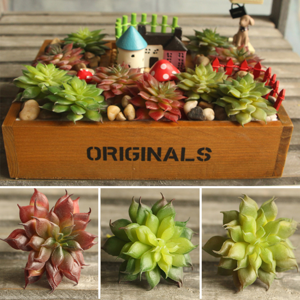 Land lotus rare garden succulent grass desert artificial for Landscape arrangement