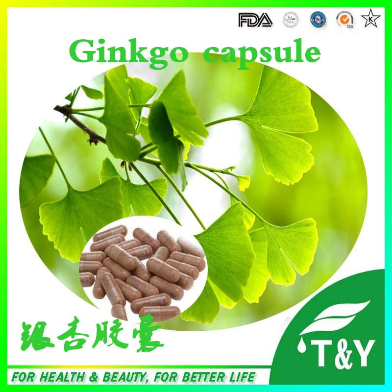 10:1 natural ginkgo biloba leaf extract capsules 500mg*600pcs(China (Mainland))