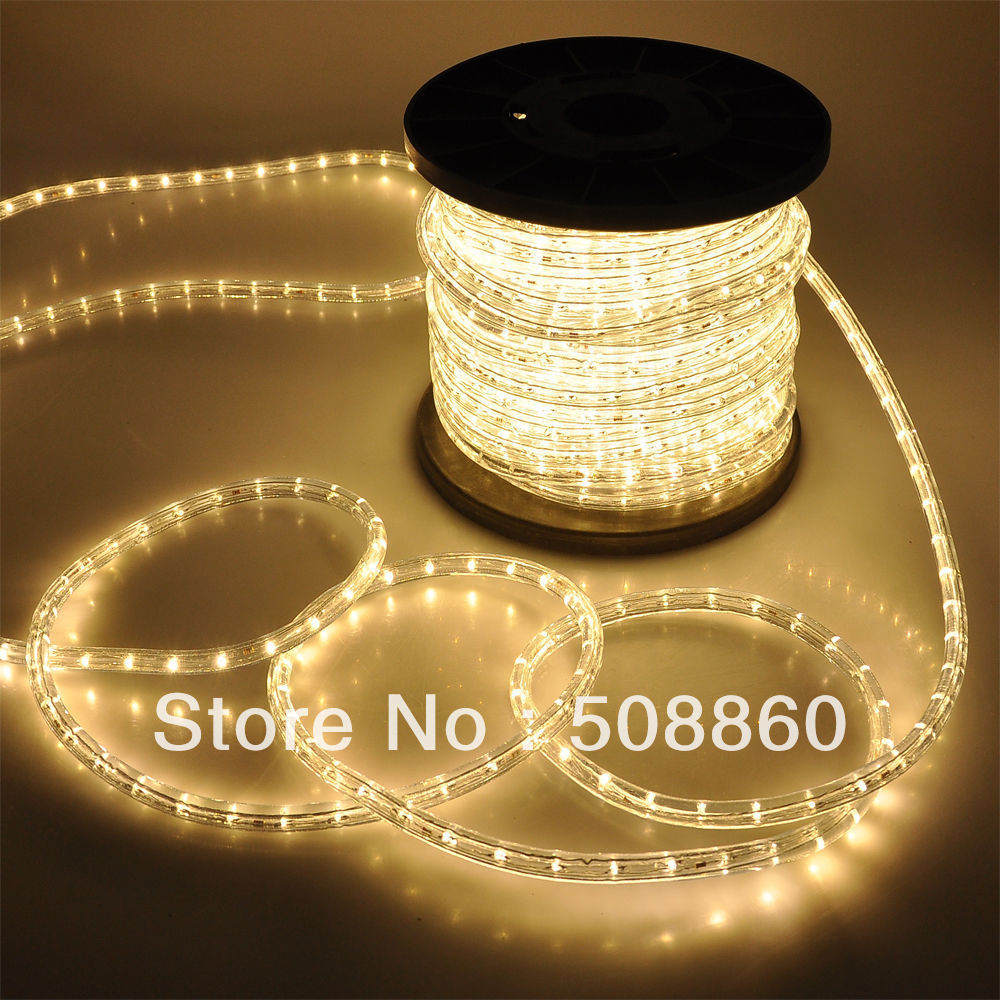 DHL free shipping IP67 5050 led strip 220v waterproof 60 led/m flexible silicon tube lights garden outdoor 110V 50M(China (Mainland))