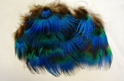 Retail 1 77 3 15 12 pcs lot DIY peafowl Peacock green feathers feather jewelry hair