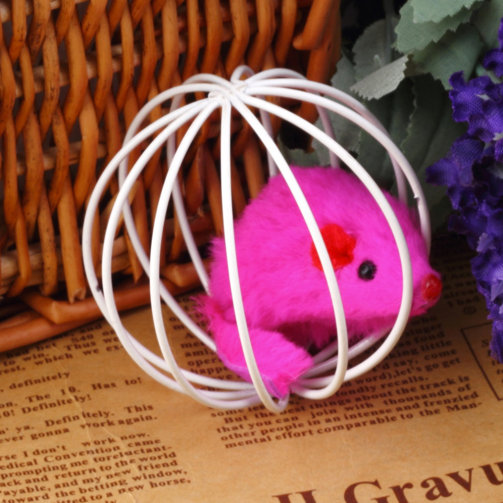 1pcs 60mm Toy Ball Fun Play Playing Toys False Mouse in Rat Cage For Pet Cat Kitten Brand New(China (Mainland))