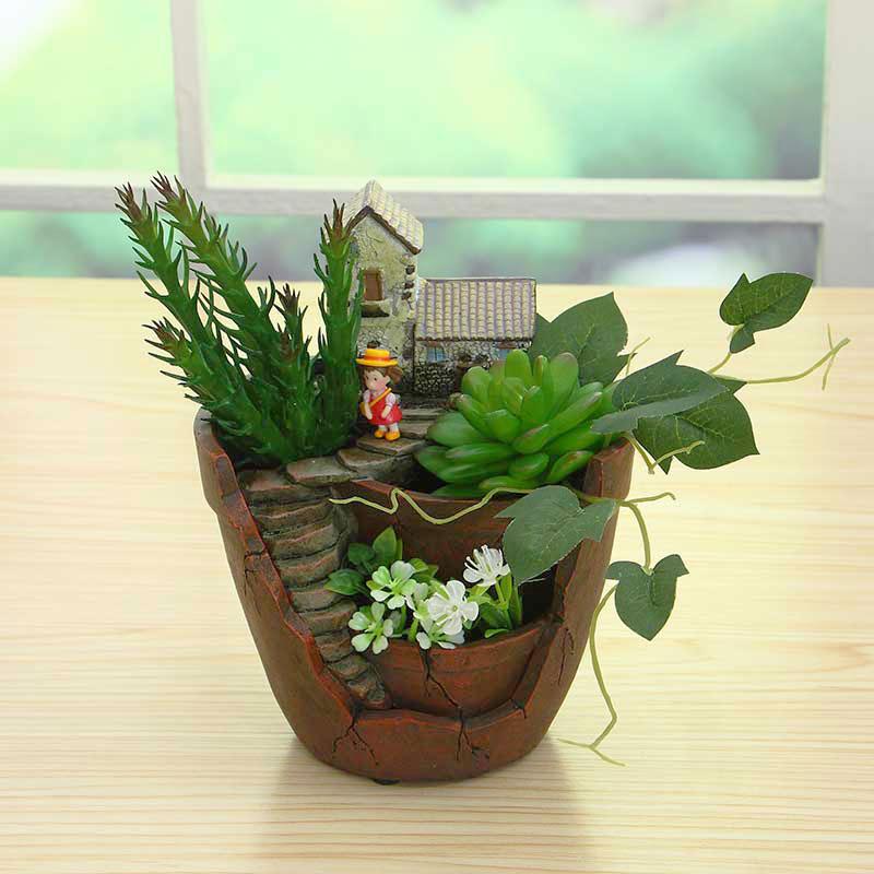 Bo te de plante achetez des lots petit prix bo te de plante en provenance de fournisseurs for Petit plante pour bureau montpellier