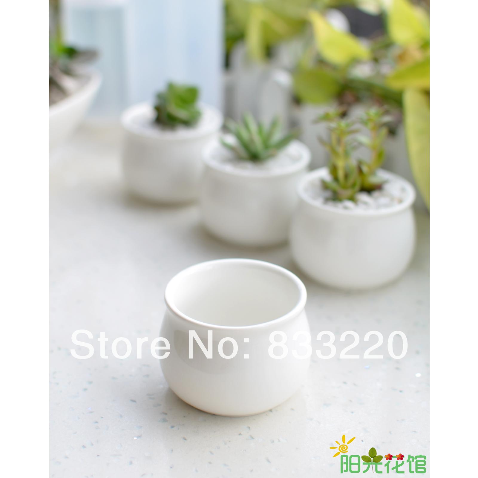 Brief White Fleshier Plant Flower Pot Ceramic Round Desktop Zakka Meat Pots  Planters Seeds Garden Supplies. Garden Flower Tubs Planters