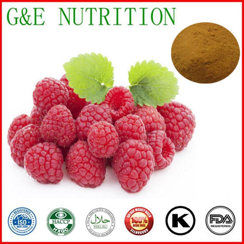 100% Natural Red Raspberry Extract Raspberry Extract 1000g