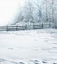 Photo Studio Floor The Snow Fencechristmas Backgroundszz Cm-0200