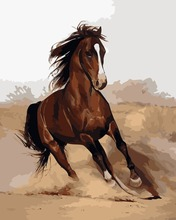 Draw Painting By Numbers Run Horse DIY Oil Painting By Numbers Coloring By Numbers Paint By Number Unique Gift(China (Mainland))