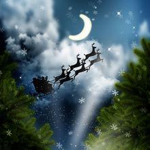 Telones de fondo para la fotografía de navidad 6.5x10ft (2×3 m) la Víspera de Navidad nieve volando fondo fotografia estudio ZJ