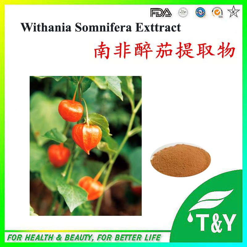 400g High purity Withania Somnifera / Ashwagandha Extract with free shipping