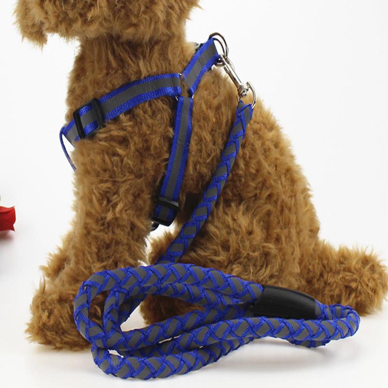Hot Fashion Nylon Pet LED Dog Leash Night Safety Flashing Glow Pet Supplies Dogs LED Dog Collar Width 2.0CM 2.5CMSize M/L(China (Mainland))