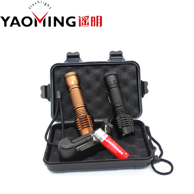 CREE XM-L 2000Lm waterproof 5-modes underwater led flashlight Dive 50 meter diving flashlight torch with 18650 battery Sets(China (Mainland))