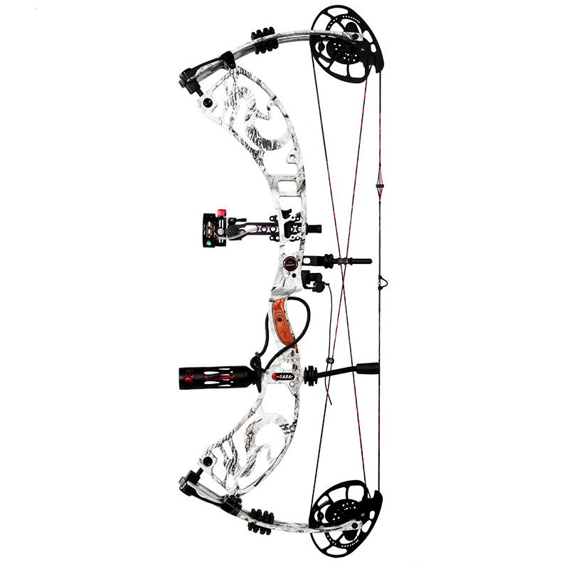 Dragon tales hunting compound bow 40 60lbs Black color bow and arrow set Cjina archery