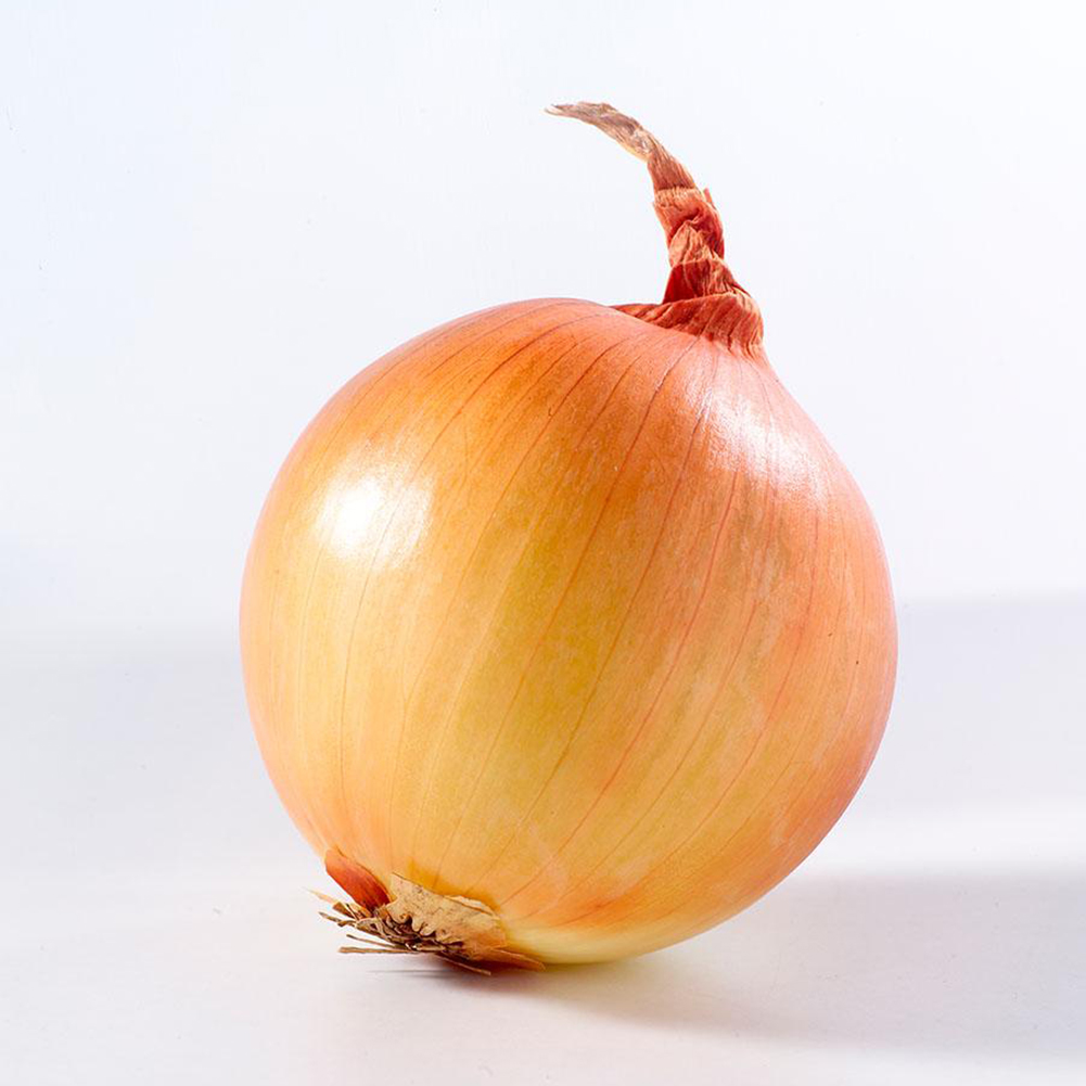 New Hot Delicious 100pcs Giant Onion Seeds Organic Russian Heirloom Vegetables For Fun Interest DIY(China (Mainland))