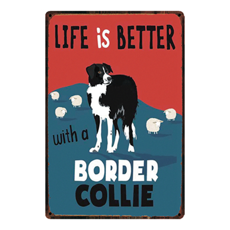 Large Metal Plaque Sign 30x20cm Dog Beware of The Welsh Sheepdog