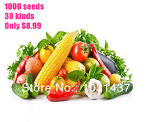 Buy sale! 1000 seeds 30 kinds different vegetable seeds flower seeds retail family potted plants home & garden free for $5.40 in AliExpress store