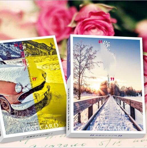 Business cards 32pcs/DIY Vintage Romatic White Snow postcard set/ greeting card(China (Mainland))